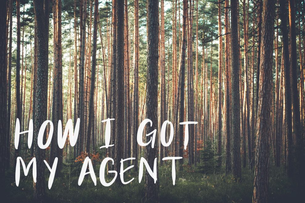 How I Got My Agent